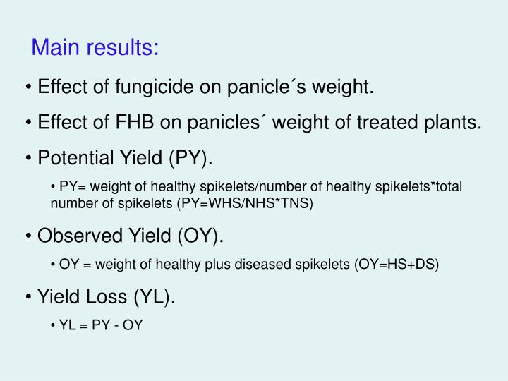 Effect of fungicide on panicle´s weight.