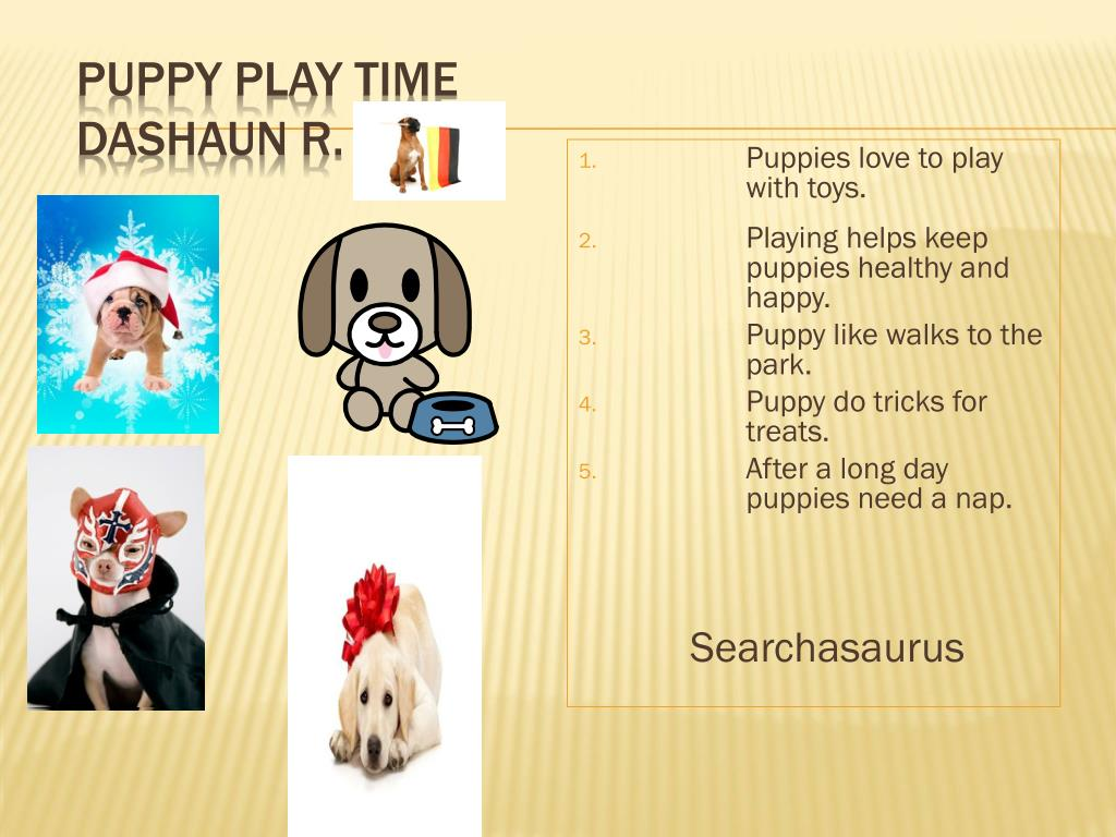 puppy play time dashaun r