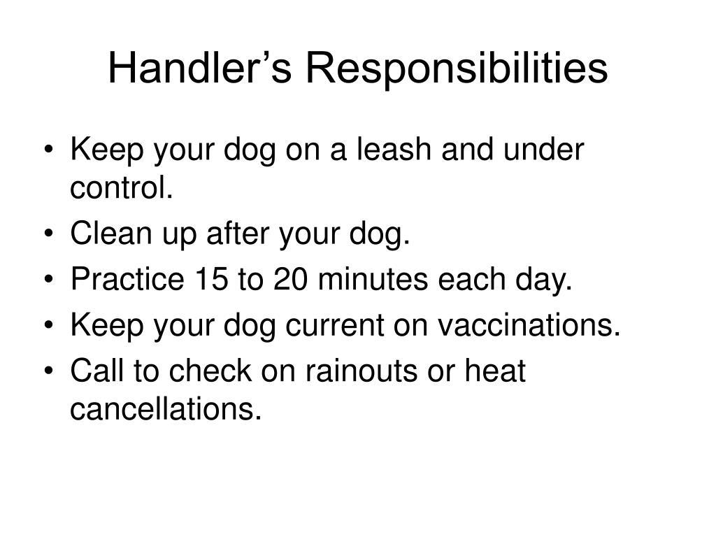 Handler's Responsibilities