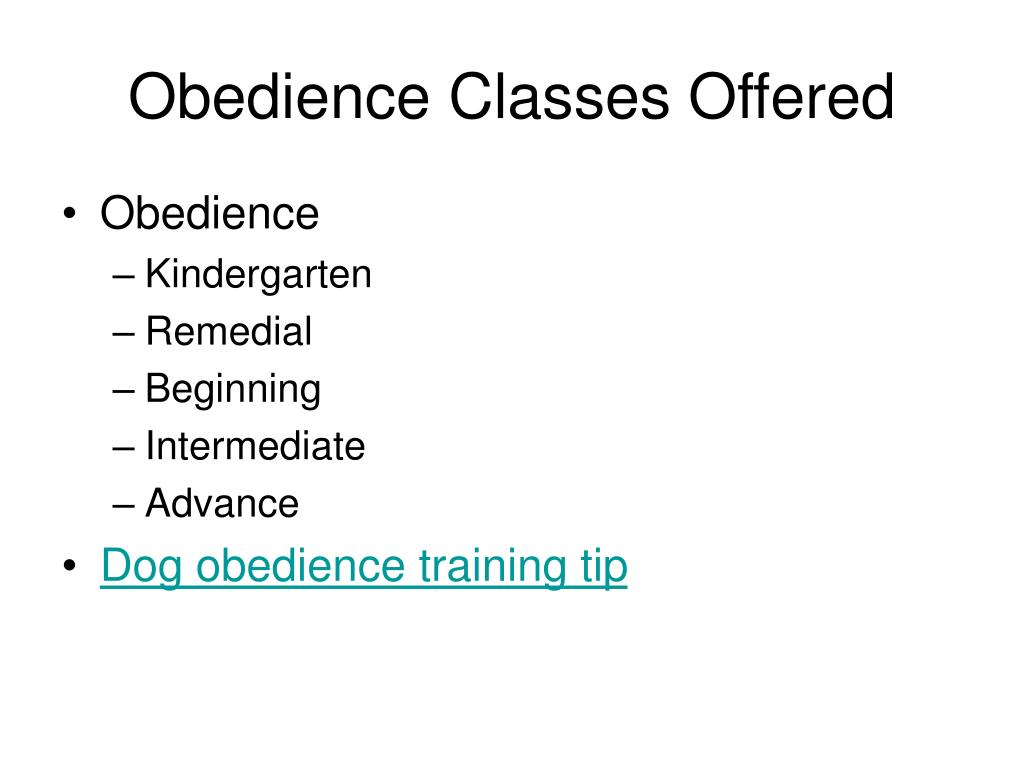 Obedience Classes Offered