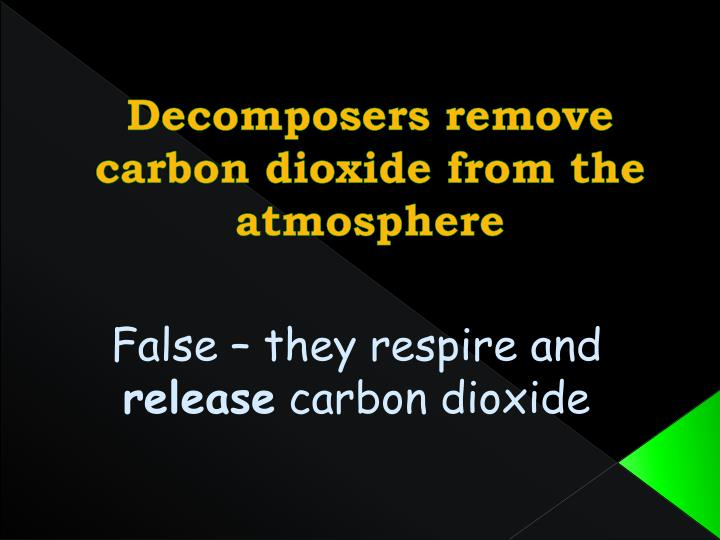 Decomposers remove carbon dioxide from the atmosphere