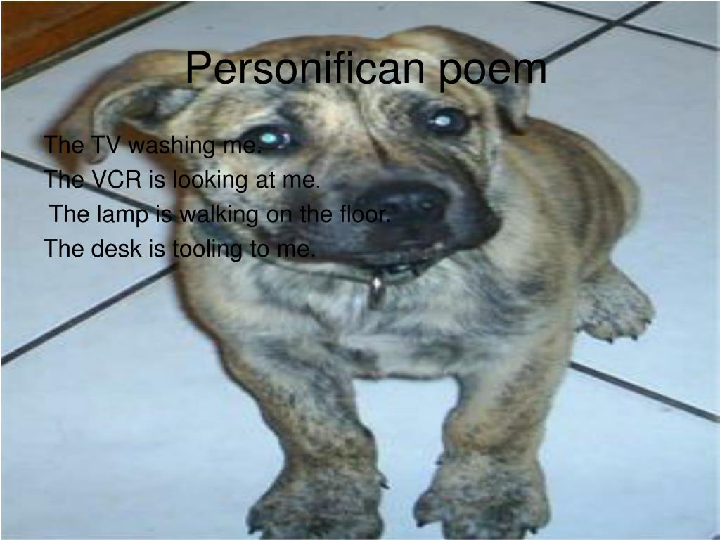 Personifican poem