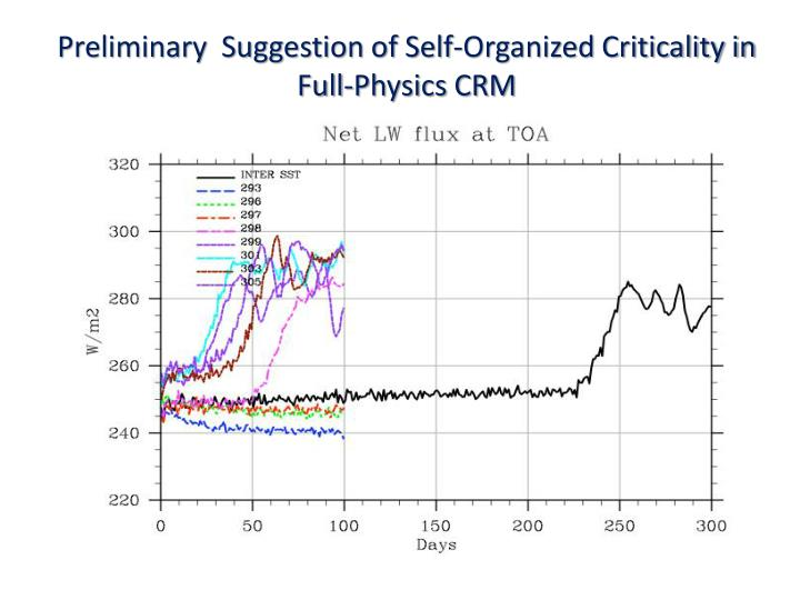 Preliminary  Suggestion of Self-Organized Criticality in Full-Physics CRM