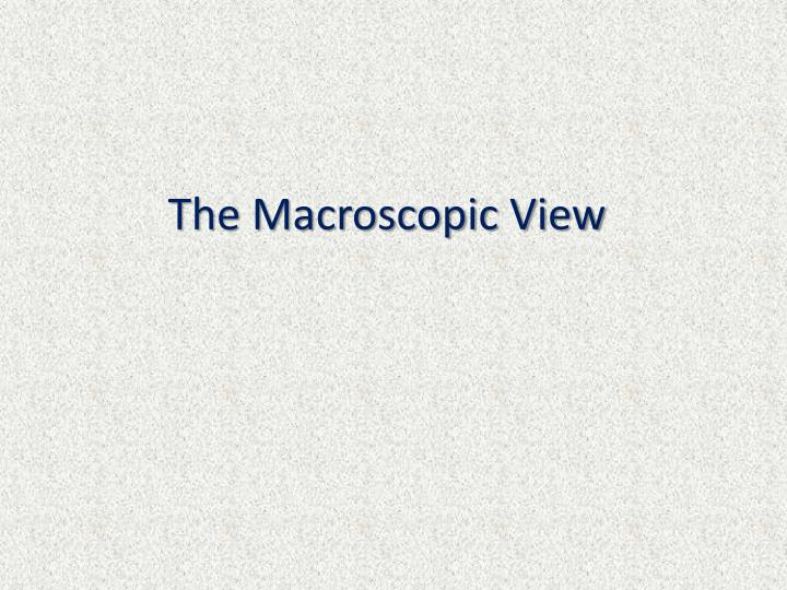 The macroscopic view