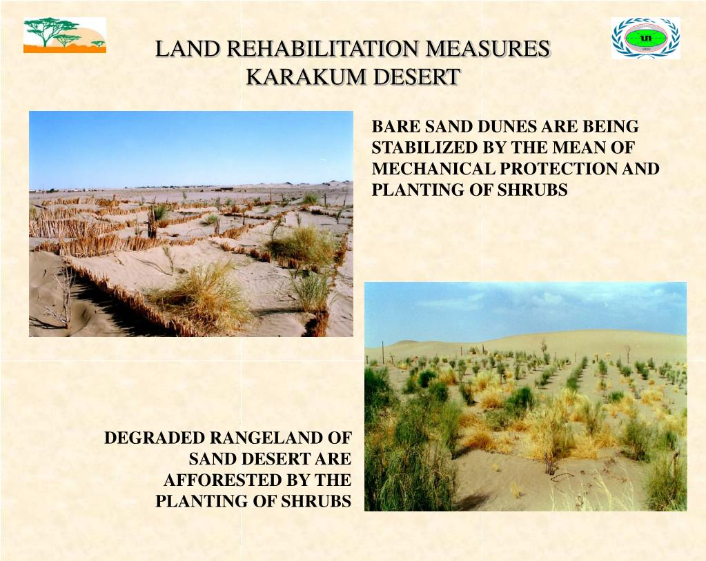LAND REHABILITATION MEASURES