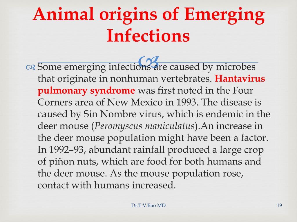 Animal origins of