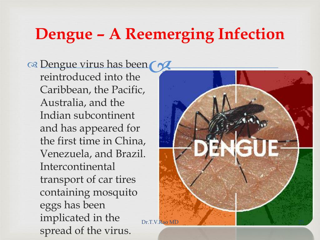 Dengue – A Reemerging Infection