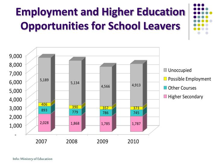 Employment and Higher Education Opportunities for School Leavers