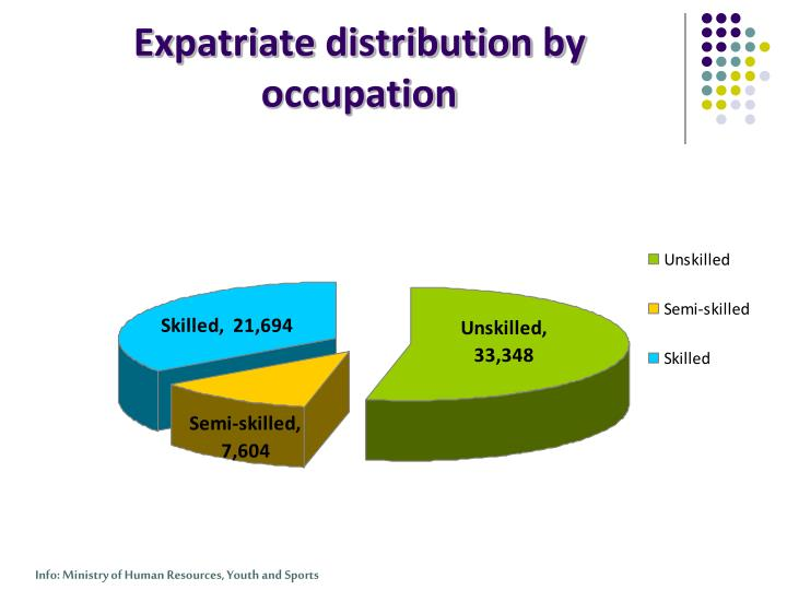 Expatriate distribution by occupation