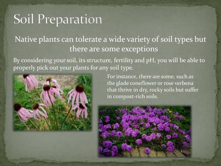 Soil Preparation