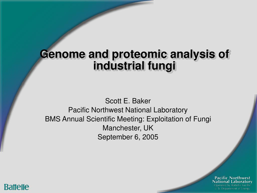 genome and proteomic analysis of industrial fungi