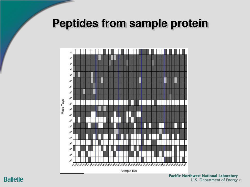 Peptides from sample protein