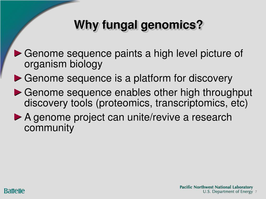 Why fungal genomics?