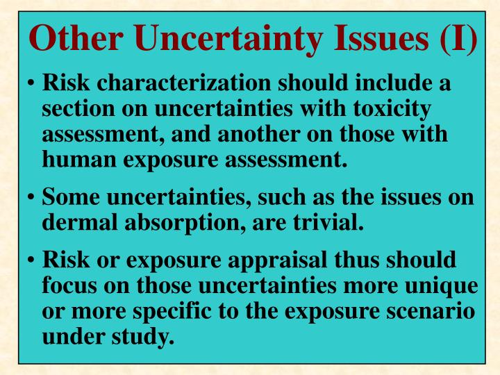 Other Uncertainty Issues (I)