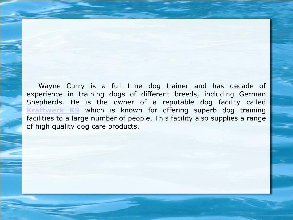 Wayne Curry is a full time dog trainer and has decade of experience in training dogs of different breeds, including German Shepherds. He is the owner of a reputable dog facility called