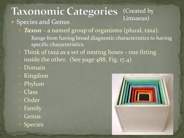 Taxonomic Categories
