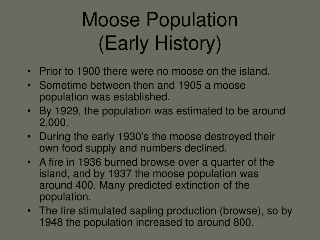 Moose Population