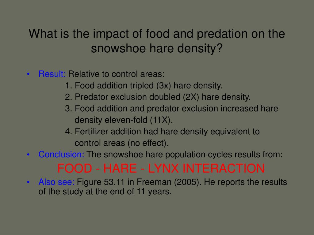 What is the impact of food and predation on the snowshoe hare density?