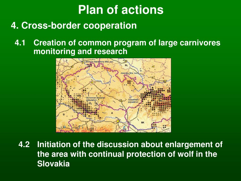 Plan of actions