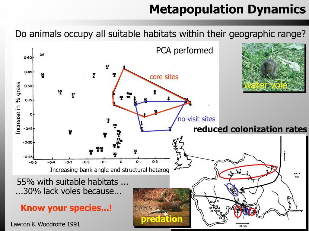 Metapopulation Dynamics
