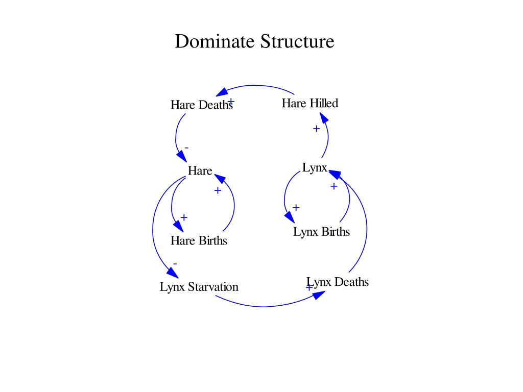 Dominate Structure