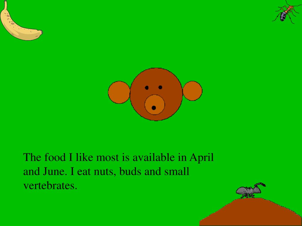 The food I like most is available in April and June. I eat nuts, buds and small vertebrates.