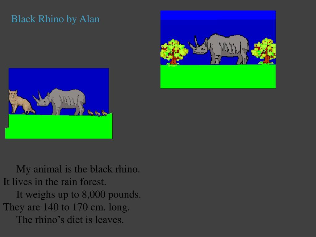 Black Rhino by Alan