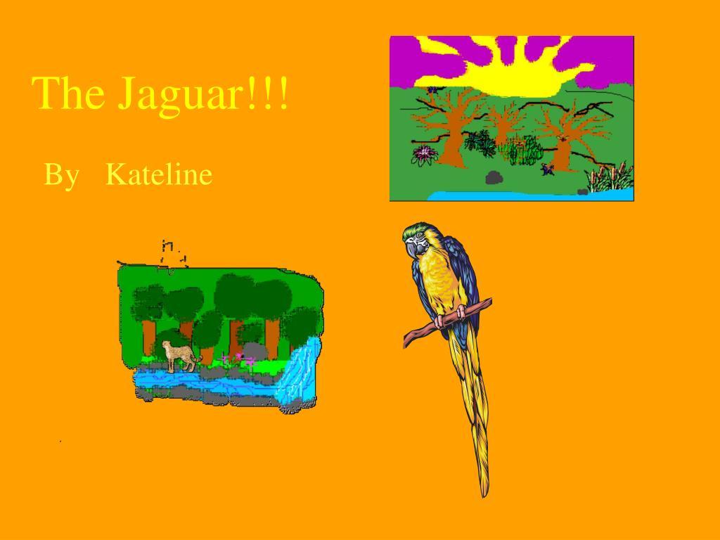 The Jaguar!!!