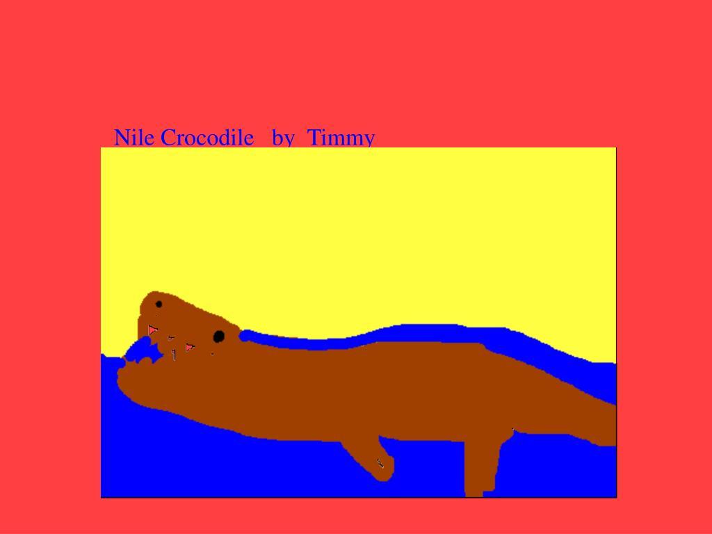 Nile Crocodile   by  Timmy