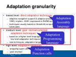 adaptation granularity