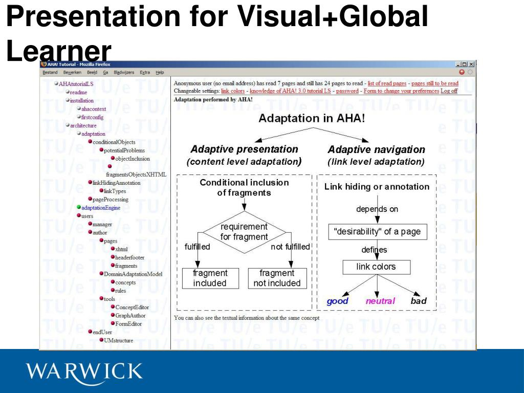 Presentation for Visual+Global Learner