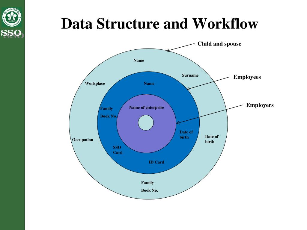 Data Structure and Workflow