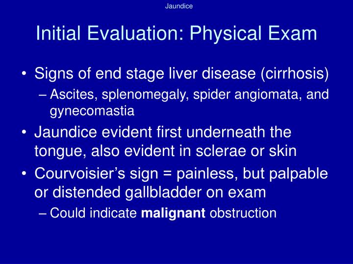 Initial Evaluation: Physical Exam