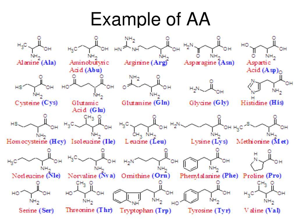 Example of AA