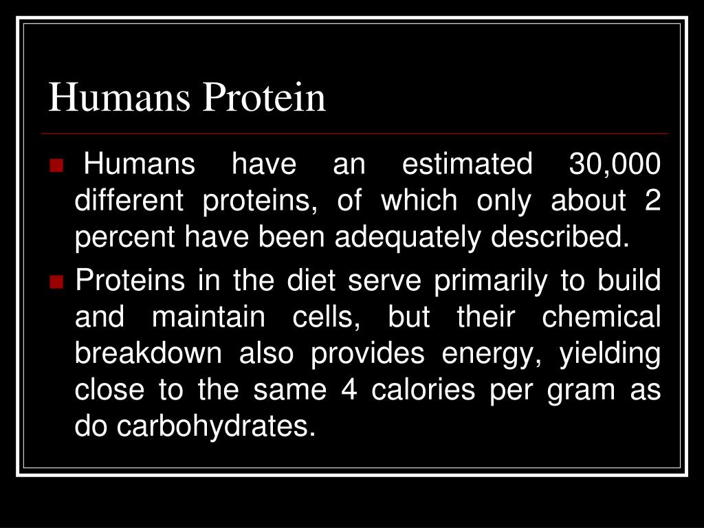 Humans Protein