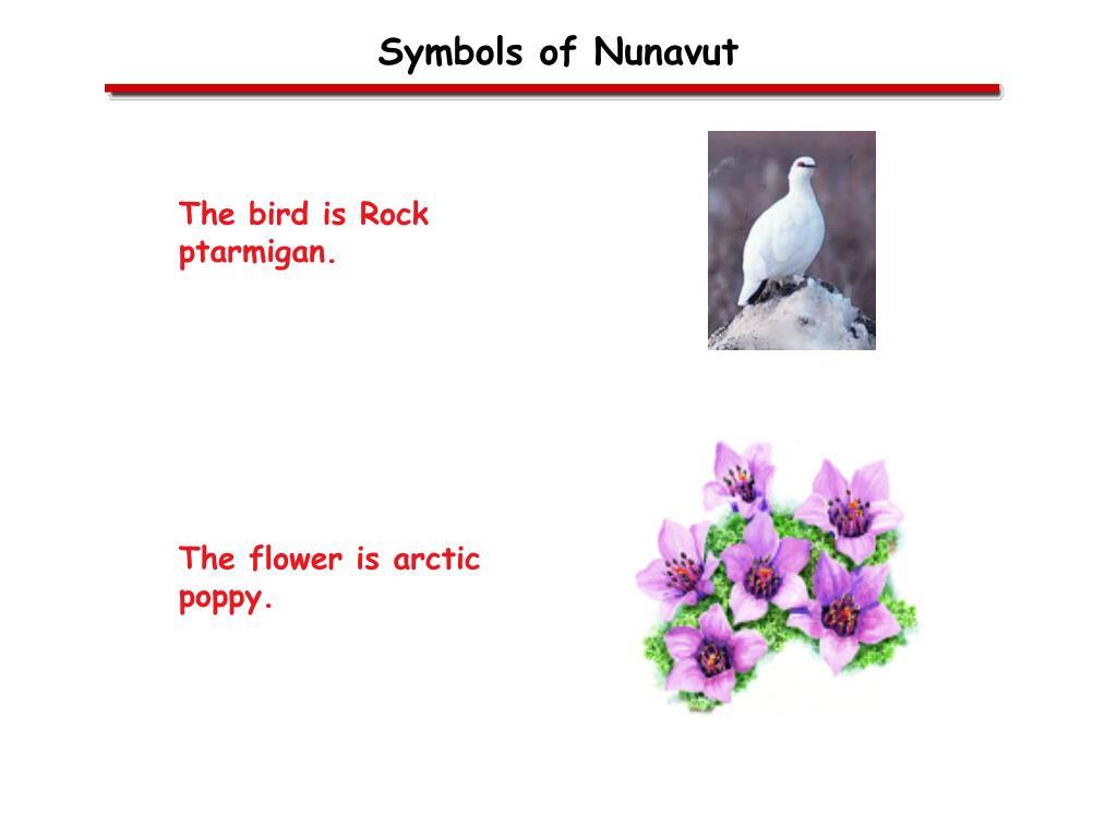 Symbols of Nunavut