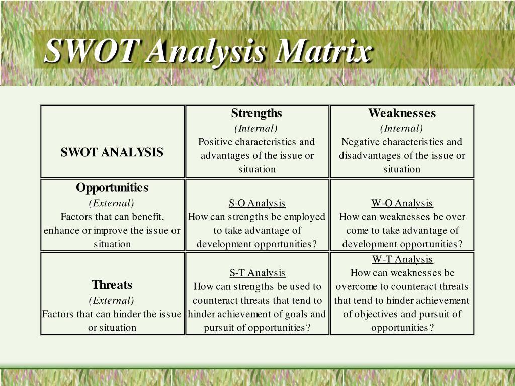 SWOT Analysis Matrix