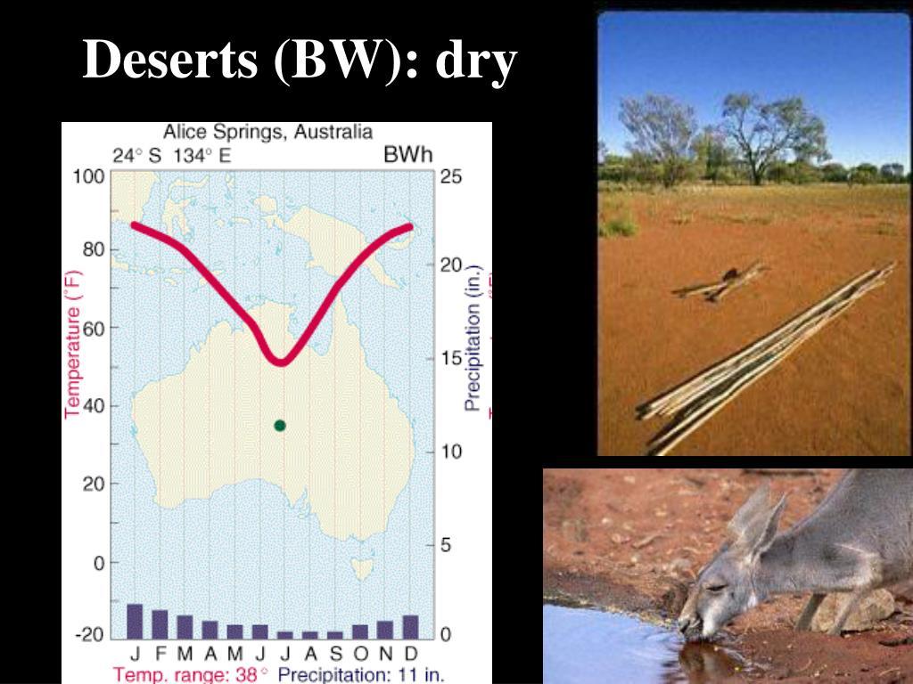 Deserts (BW): dry