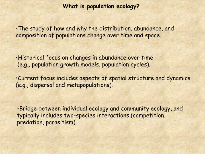 What is population ecology?