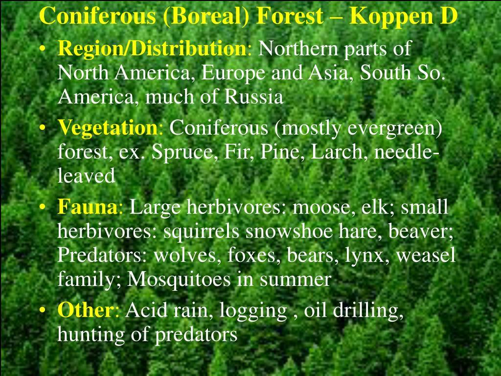 Coniferous (Boreal) Forest – Koppen D