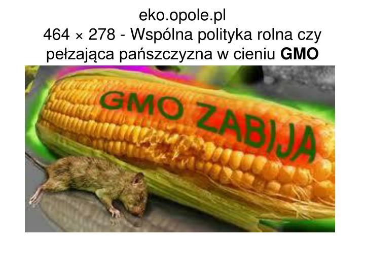 eko.opole.pl
