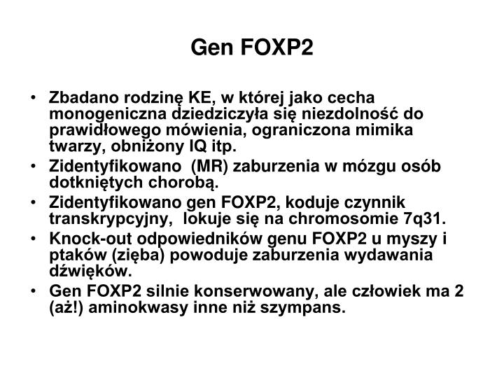 Gen FOXP2