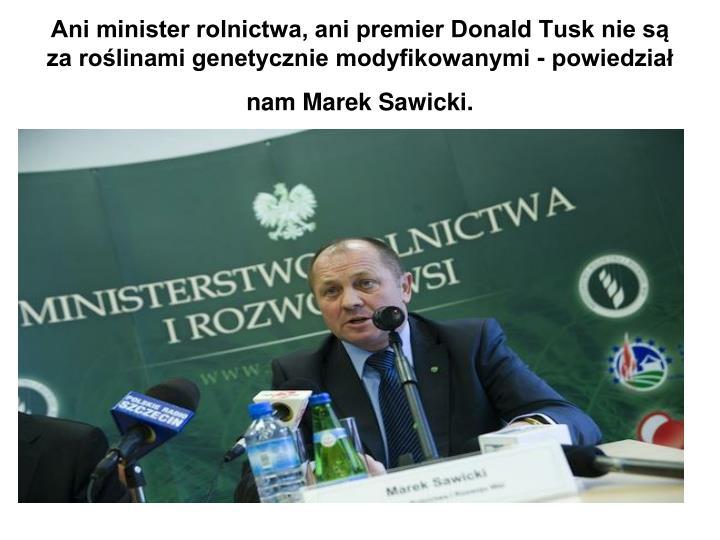 Ani minister rolnictwa, ani premier Donald Tusk nie są za roślinami genetycznie modyfikowanymi - powiedział nam Marek Sawicki.