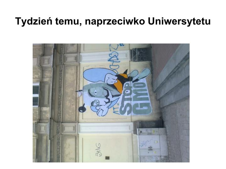 Tydzień temu, naprzeciwko Uniwersytetu