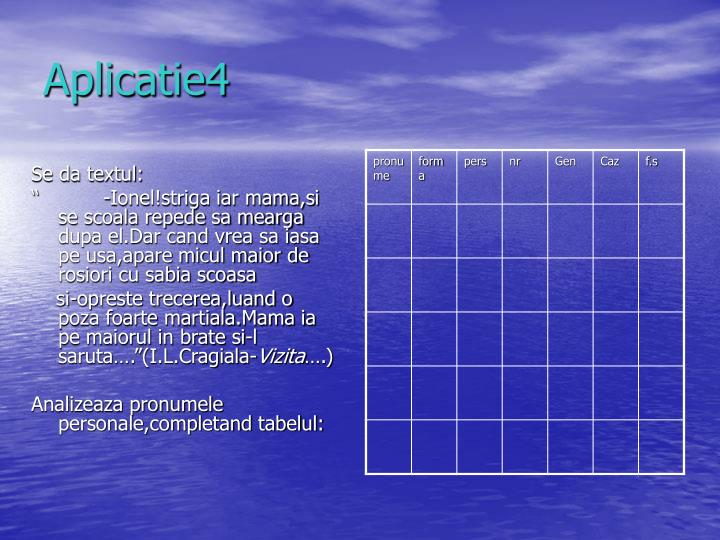 Aplicatie4