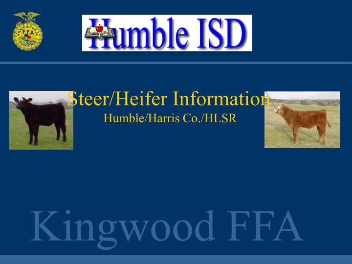 Steer/Heifer Information
