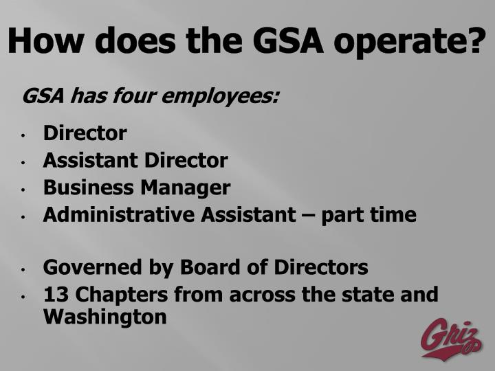 How does the GSA operate?