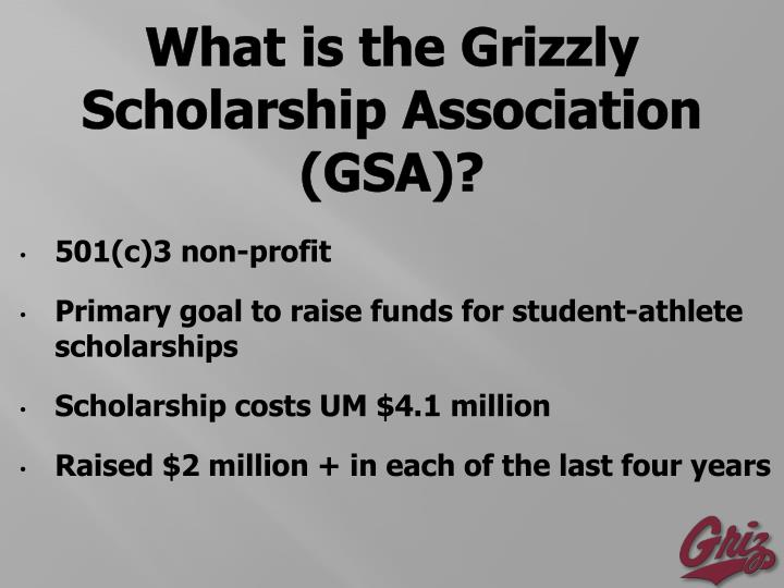 What is the Grizzly Scholarship Association (GSA)?