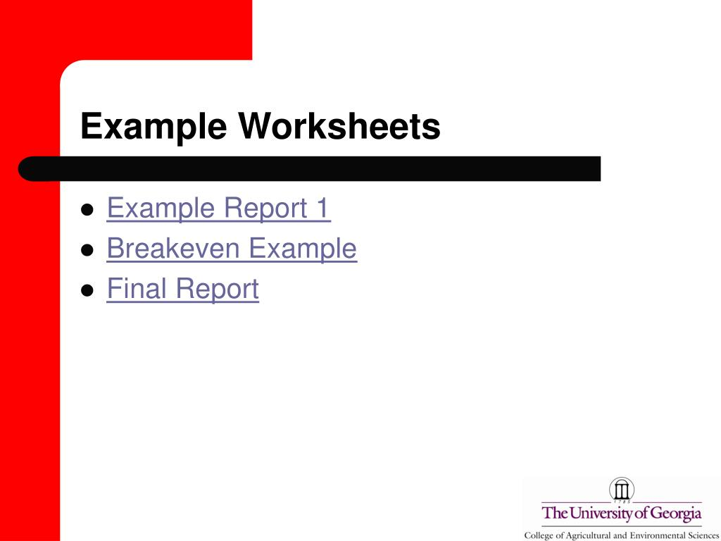 Example Worksheets