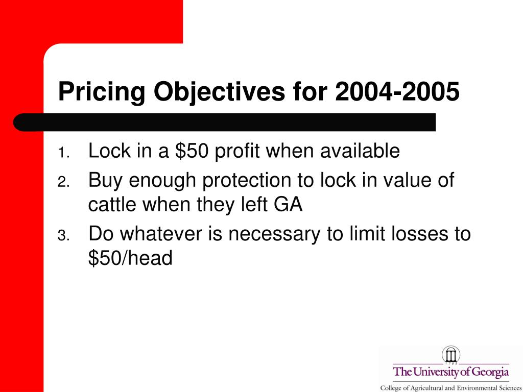 Pricing Objectives for 2004-2005